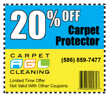 Rug Cleaning Eastpointe MI and Grout Cleaning Service